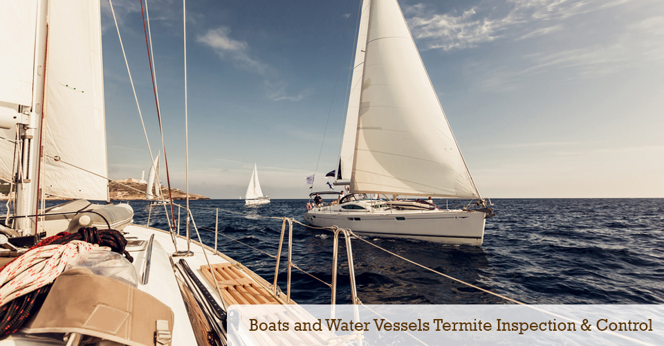 Boats and Water Vessels termite inspections and control