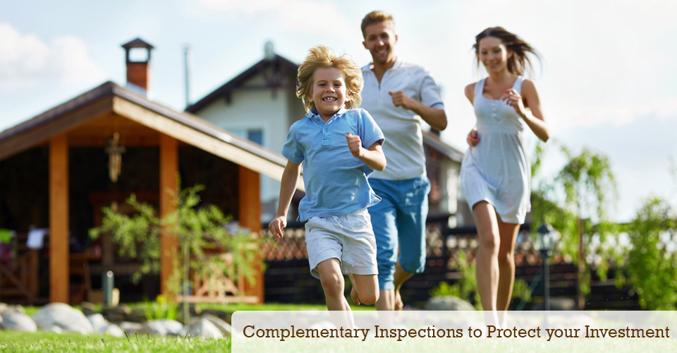 Complementary termite inspection to protect your investment