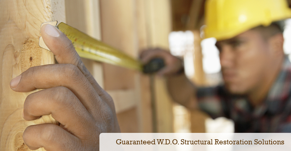 Quality Guaranteed WDO Structural Restoration Solutions